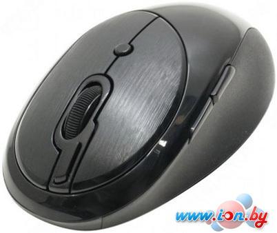 Мышь A4Tech G10-800F-1 в Могилёве