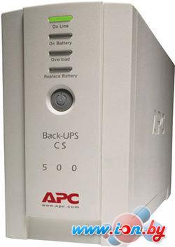 Источник бесперебойного питания APC Back-UPS CS 500VA (BK500EI) в Могилёве