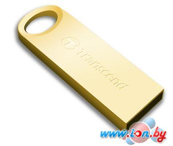 USB Flash Transcend JetFlash 520G 8Gb Gold (TS8GJF520G) в Могилёве