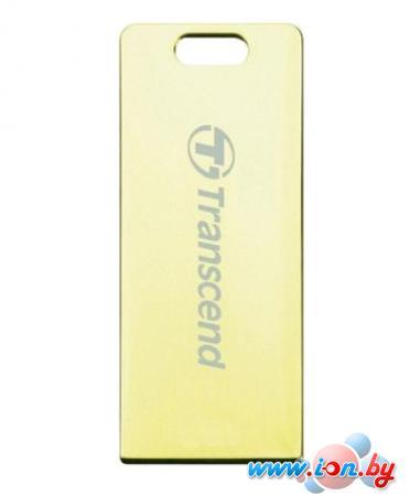 USB Flash Transcend JetFlash T3G 32Gb Gold (TS32GJFT3G) в Могилёве
