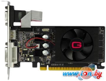 Видеокарта Gainward GeForce GT 610 1024MB DDR3 (426018336-2647) в Могилёве