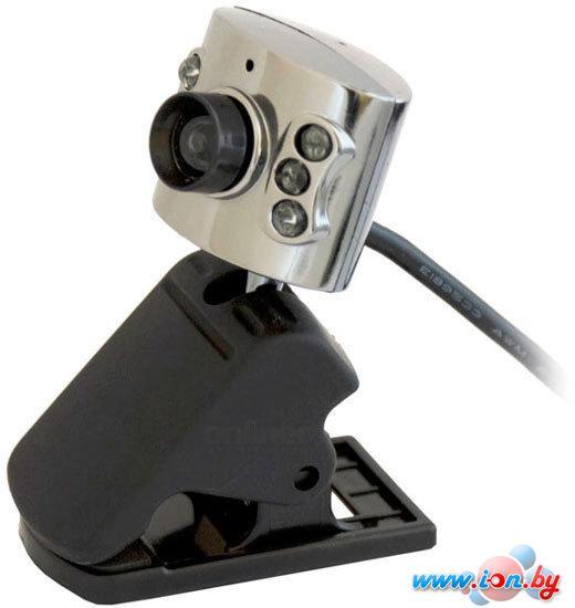 Web камера Ritmix RVC-017M в Могилёве