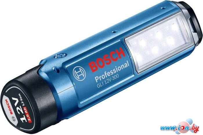 Фонарь Bosch GLI 12V-300 [06014A1000] в Могилёве