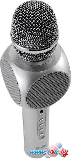 Микрофон Gmini GM-BTKP-03S в Бресте