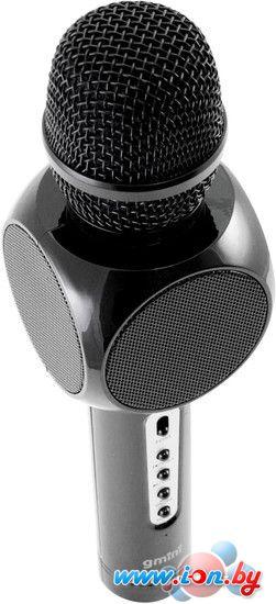 Микрофон Gmini GM-BTKP-03B в Бресте