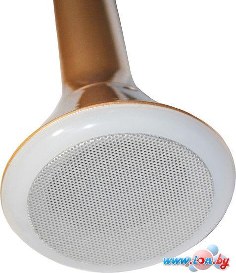 Микрофон Palmexx K1 в Витебске