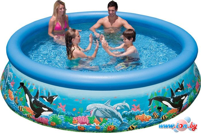 Надувной бассейн Intex Ocean Reef Easy Set 305x76 (54900/28124) в Бресте