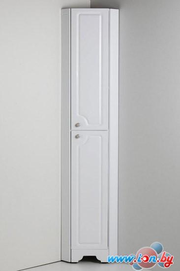 АВН Шкаф-пенал Верона 25 [46.11] в Бресте