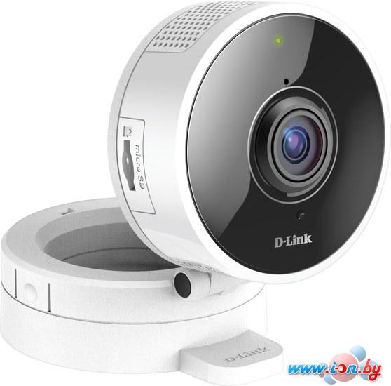 IP-камера D-Link DCS-8100LH/A1A в Бресте