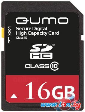 Карта памяти QUMO SDHC (Class 10) 16GB в Могилёве