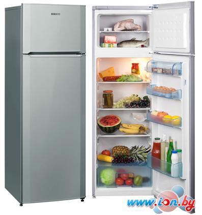 Холодильник BEKO DS328000S в Могилёве