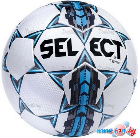 Мяч Select Team (размер 5) в Гомеле