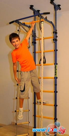 Детский спортивный комплекс Kampfer Strong Kid Ceiling Стандарт (синий/желтый) в Гомеле