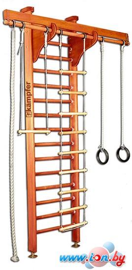 Детский спортивный комплекс Kampfer Wooden Ladder Maxi Ceiling (вишня) в Гомеле