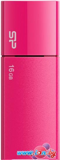 USB Flash Silicon-Power Ultima U05 16GB Pink (SP016GBUF2U05V1H) в Могилёве