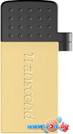 USB Flash Transcend JetFlash 380G 16GB Gold (TS16GJF380G) в Могилёве