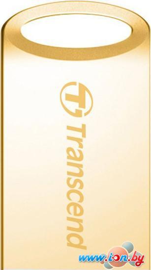 USB Flash Transcend JetFlash 510G 8GB Gold (TS8GJF510G) в Могилёве