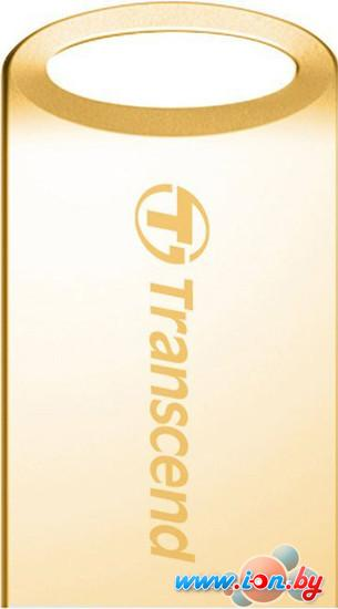 USB Flash Transcend JetFlash 510G 16GB Gold (TS16GJF510G) в Могилёве