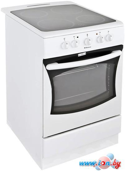 Кухонная плита Hansa FCCW 51004011 в Могилёве