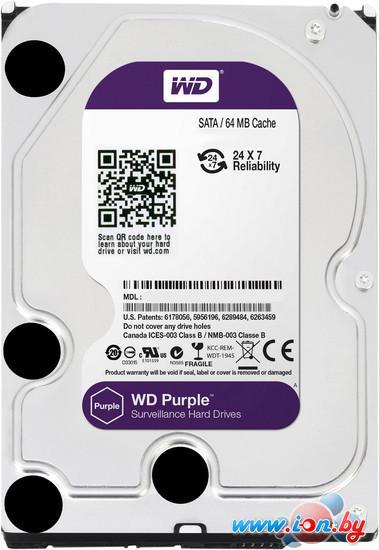 Жесткий диск WD Purple 4TB (WD40PURX) в Могилёве