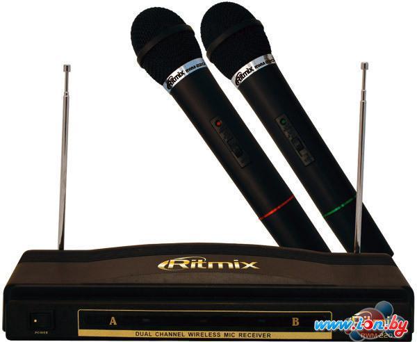 Микрофон Ritmix RWM-220 в Могилёве
