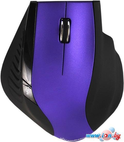 Мышь SmartBuy 613AG Purple/Black (SBM-613AG-PK) в Могилёве