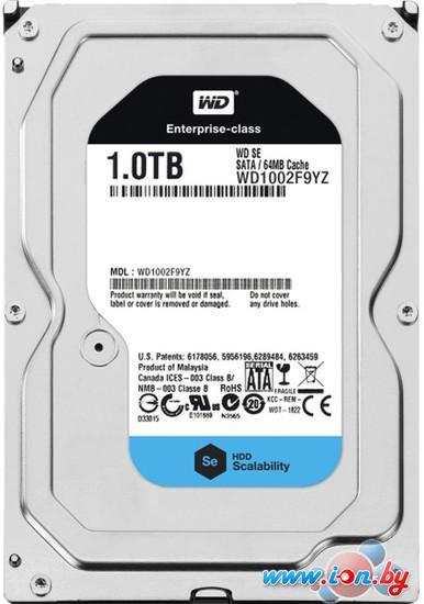 Жесткий диск WD Se 1TB (WD1002F9YZ) в Могилёве